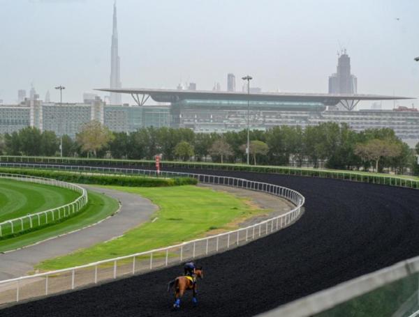 Meydan prepara la edición 2019 de la Dubai World Cup