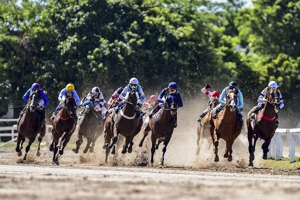 El Hipódromo de Palermo pone en juego el pozo más grande de la historia de la Hípica Argentina