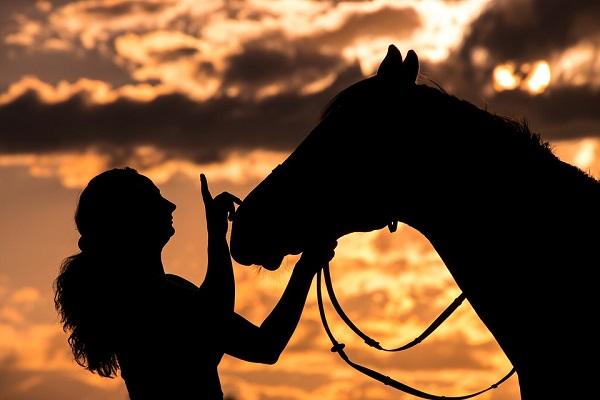 De que trata la 3era JORNADA DE SANIDAD Y BUEN TRATO EQUINO 2019 «La Mujer y el Caballo»