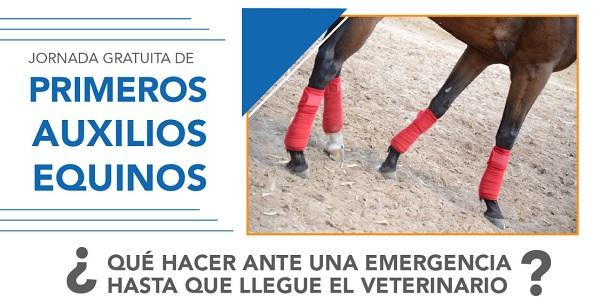 Jornada Gratuita de Primeros Auxilios Equinos – Córdoba