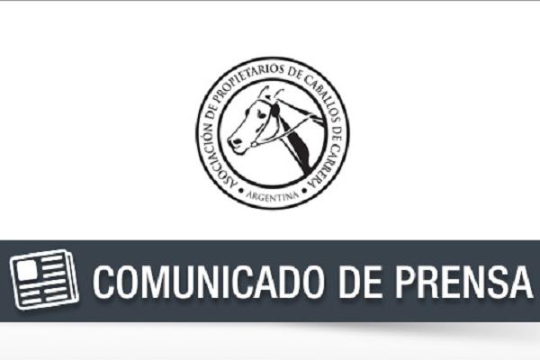 Pronunciamiento de APCC