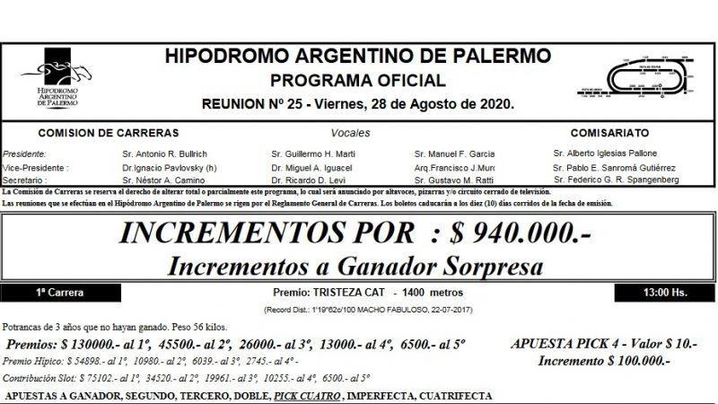 Programa Oficial 28 y 31 de Agosto