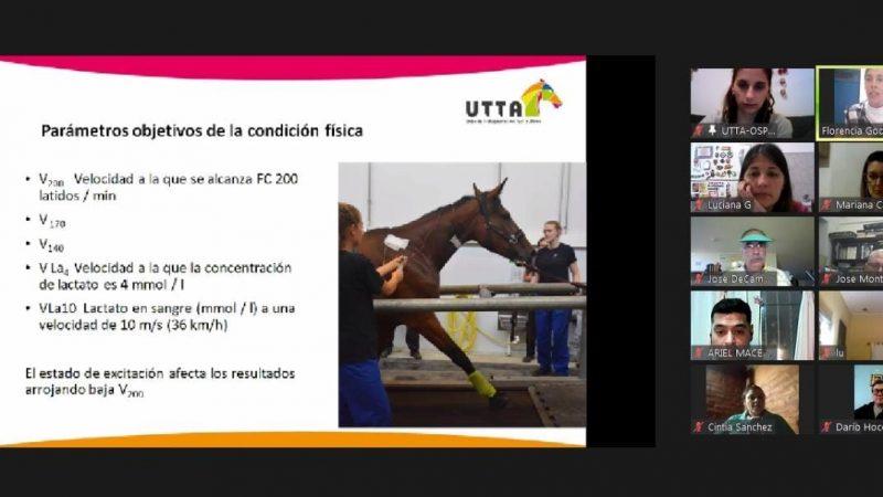 Un apasionante viaje por la ciencia del caballo deportivo